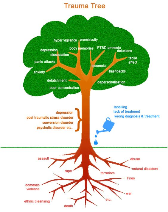 Trauma Tree - this is a good graphic of how symptoms can grow from trauma and ignoring the issues. With good therapy, coping skills and support these symptoms can be more controllable: