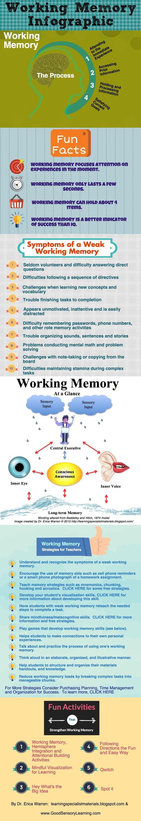 Understanding Working Memory - the process, definition, fun facts, strategies, activities and more.