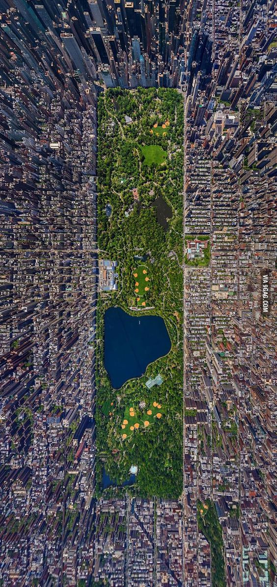 Central Park viewed from the top.