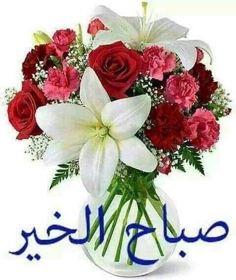 يوم جديد وأمل جديد فافتحوا نافذة الدعاء ليتجدد الهواء وآمنوا بقوله تعالى ولس وف يعط يك ربك فت رضى صباح الخير صبآح الرض Pretty Flowers Floral Wreath Floral