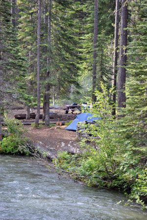 Car Camping with Kids in the Pacific Northwest: The Essential Guide - ParentMap