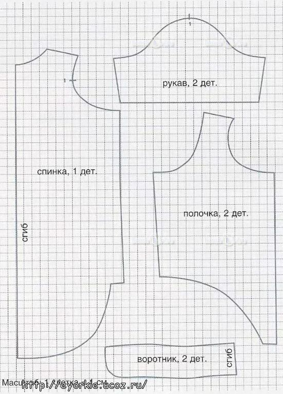 Free Dog Clothing Pattern : clothing, pattern, Shirt-coat-sweater, Pattern, Instructions, Clothes, Patterns, Sewing,, Pattern,