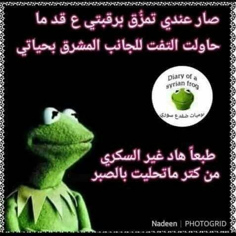 تمبات نيودوس نيودوس كوميك ميمز صور مضحكة صور تعليقات فيسبوك صور للفيسبوك صور ترحيب تيمب سوري صور فيس Funny Arabic Quotes Memes Funny Faces Arabic Funny