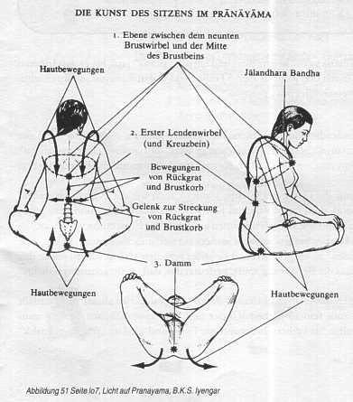 Según la medicina áiurveda y el yoga, el praná fluye a través de una red de canales llamados nadís. Son tubos (pueden ser la tráquea con los dos bronquios, o la red de arterias y venas) a través de los cuales fluye el praná ('aire inspirado').
