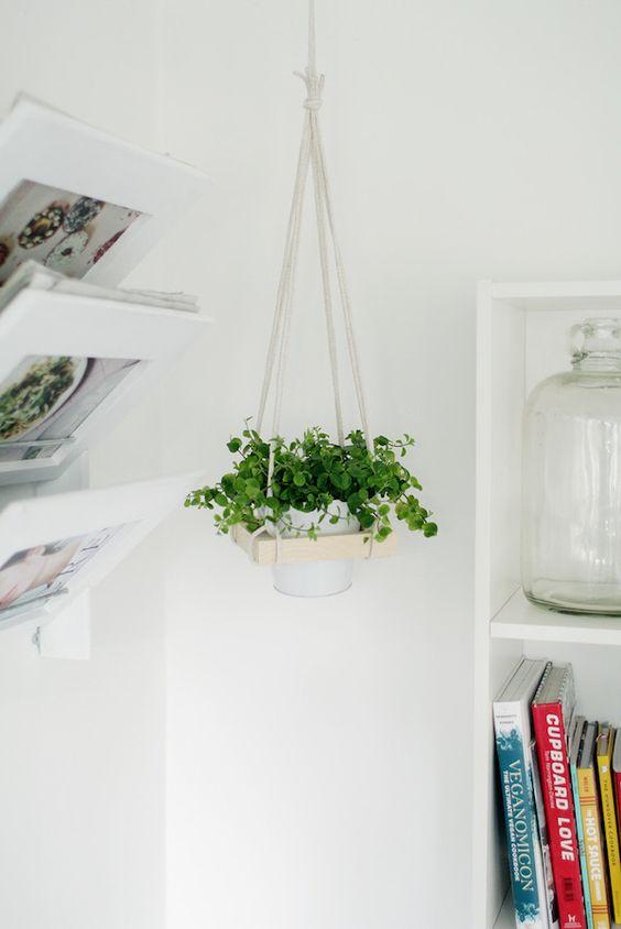 colgador para plantas