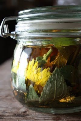 Easy poison ivy remedy. Jewel weed, calendula, apple cider vinegar... Steep in aglass jar. Keep in fridge and apply as needed: Natural Health, Herbal Remedies, Orange Potatoes, Apple Cider Vinegar, Jewelweed Poison, Poison Ivy Remedies, Jewelweed Pioson, Ivy Remedy, Natural Remedies