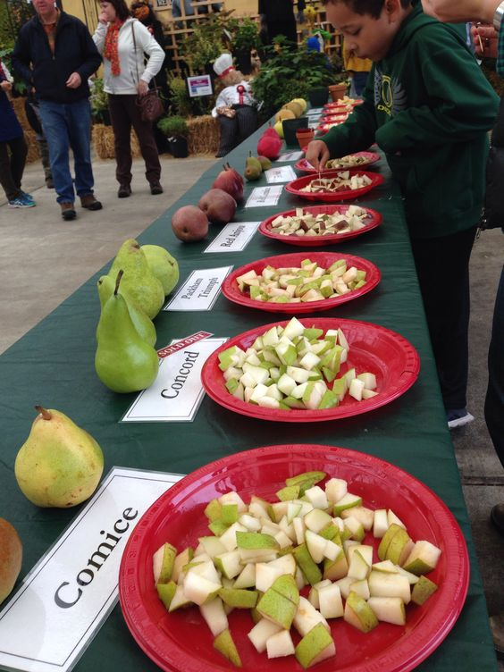 Pear tasting at Portland Nursery.