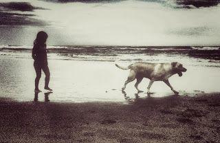 Sem olhar para trás. #labrador #praia #criança