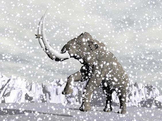 Un grupo de científicos rusos y franceses se han encontrado con EL VIRUS ZOMBI , uno de los hallazgos científicos más sorprendentes de los últimos tiempos. Sepultado bajo la helada geografía de la región de Siberia, se ha encontrado un súper virus que permaneció 30.000 años intacto.Un hallazgo sorprendente en el Permafrost de