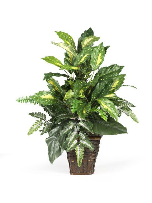 Variegated Hosta Artificial Plant Set Of 6 Realistic Nearly Natural Home Decor