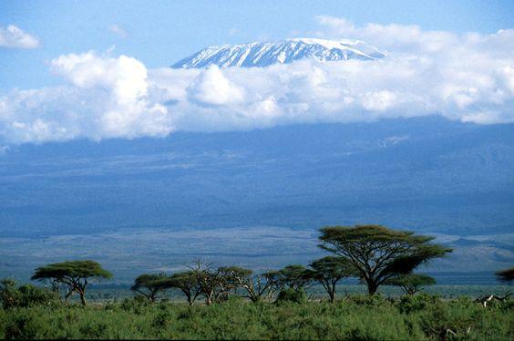 The Kili... Tsavo National Park,Kenya