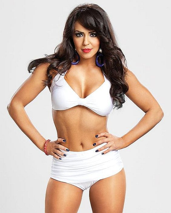Wwe Diva Layla Nude 42