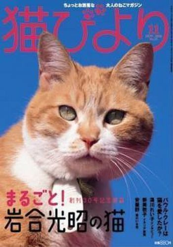 No.30 まるごと!岩合光昭の猫