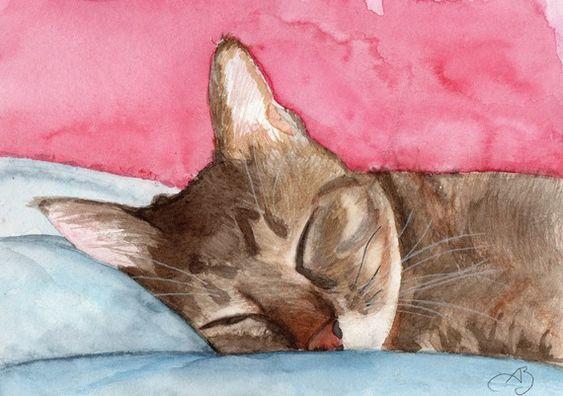Carte postale - Chat - Maiou endormie