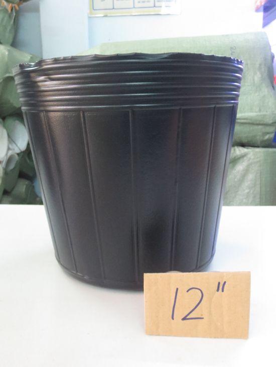 Chậu nhựa cứng - Chậu nhựa mềm - Chậu nhựa treo - 19