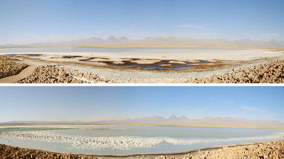 La Laguna Tebinquinche es uno de los 4 grandes cuerpos de agua presentes dentro de la extensión del Salar de…