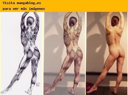 anatomia humana dibujo - Buscar con Google