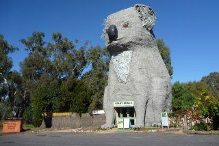 Giant Koala | Dadswell's Bridge, Victoria, Australia.: Big Things, Koala Keith, Dadswell S Bridge, Giant Koala, Koala Dadswell S, Big Koala, Koala Stawell, Roadside Attractions