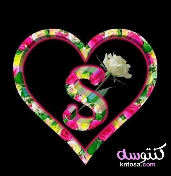 حرف S بالورد خلفيات حرف S رومانسية أصحاب حرف Sh حرف S في قلب S Love Images S Letter Images Love Poetry Images