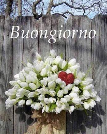 Moti dell'anima – Społeczność – Google+: