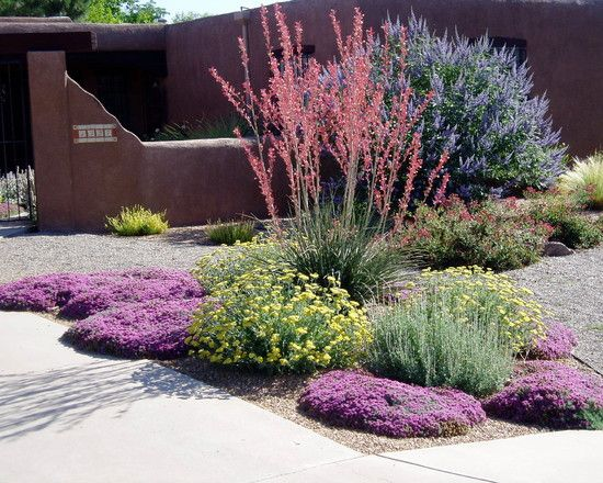 Colorful Xeric Garden -- Blue Shrub Is Vitex. Also In The Photo Are Red YuccaGreek Germander ...