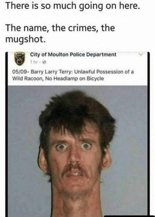 Sweet Home Alabama Funny Relatable Memes Memes Stupid Funny