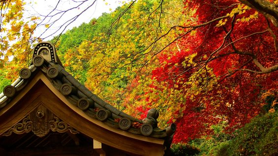 金蔵寺 Konzoji-Temple