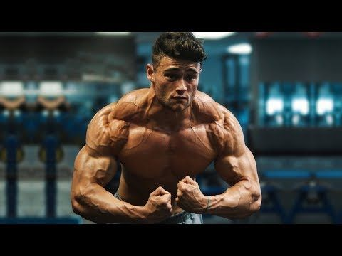 No Life Without Gym Motivational Video Youtube In 2020 Motivational Videos Motivational Videos Youtube Fitness Motivation