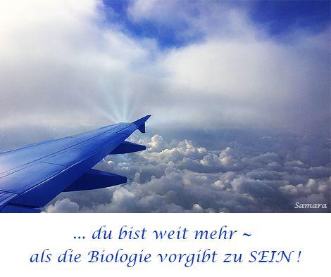... du bist weit mehr ~ als die #Biologie vorgibt zu #SEIN !