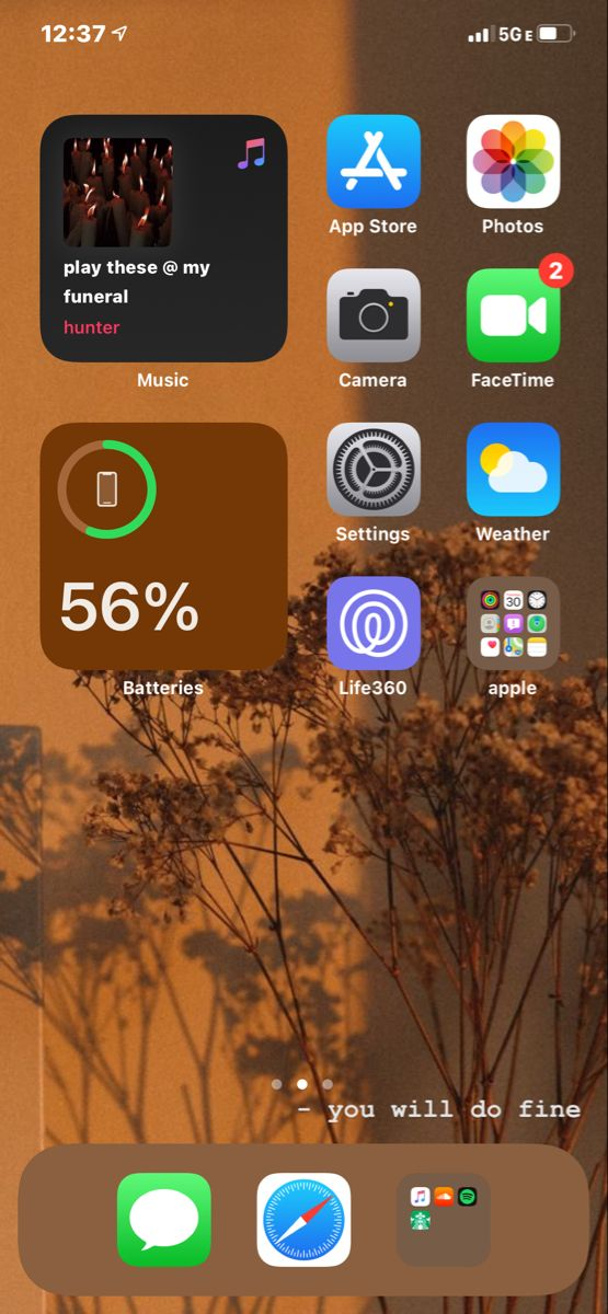 Iphone Organization Iphone Organization Homescreen Iphone Iphone App Layout