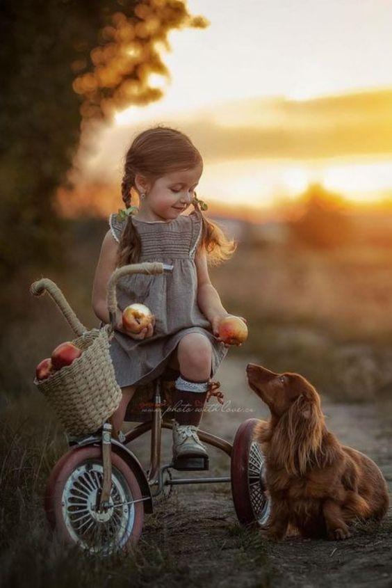 Little girl on tricycle offering an apple to her dog. #cutekids #littlegirls #kidsandanimals #vintagetricycle #doglovers #dachshund #longhaireddachshund