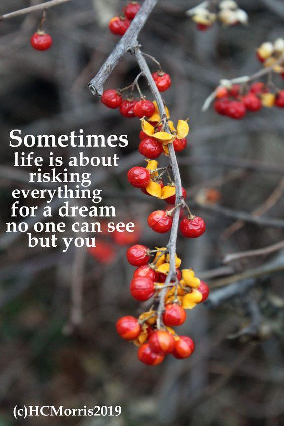 bittersweet berries with words