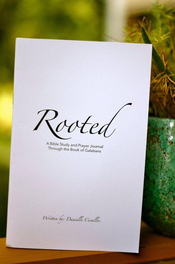 Amazon.com: basic bible study