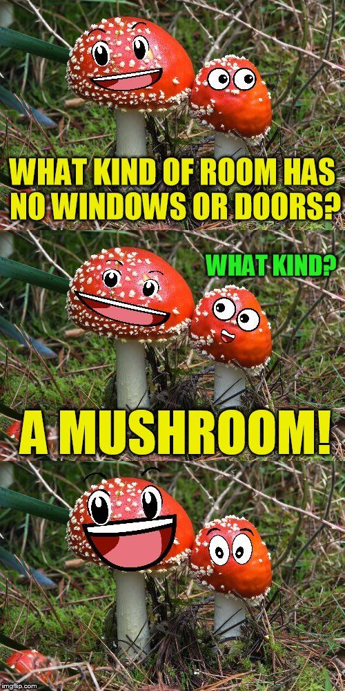What Kind Of Room Has No Doors And No Windows Mushroom Letsgetwordy Stuffed Mushrooms Windows Doors