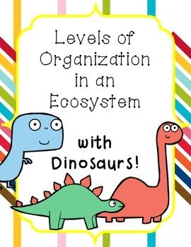 levels of organization in an ecosystem lesson with anchor charts teacher pay teachers the o. Black Bedroom Furniture Sets. Home Design Ideas