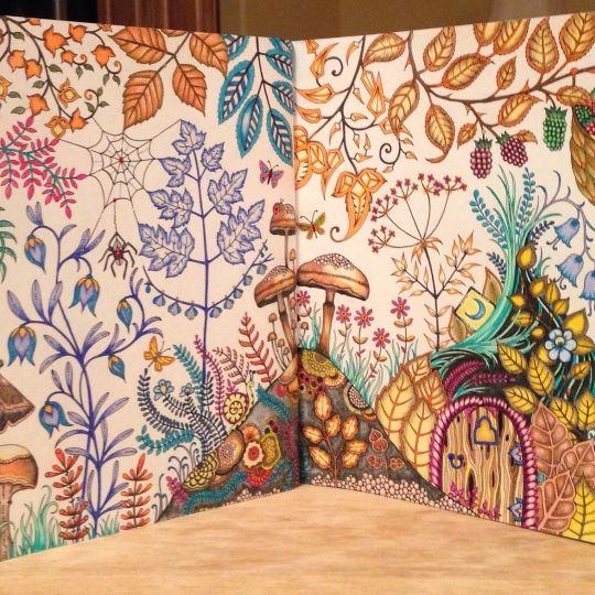Johanna Basford | Colouring Gallery | By Cheryl Tyler, Outlook, Saskatchewan, Canada