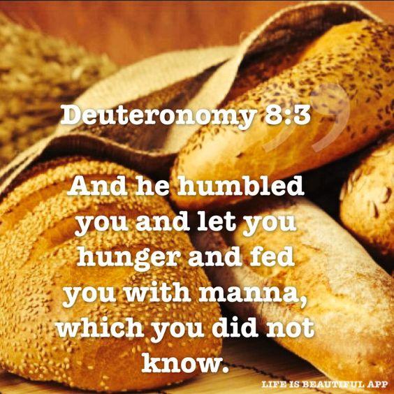 Dueteronomy 8:3