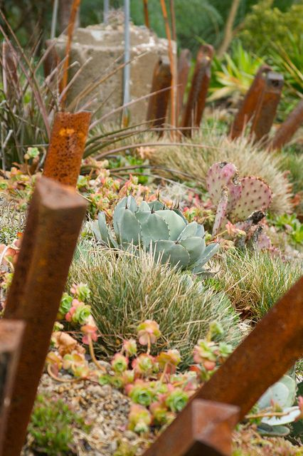Dry Garden with Agave, Opuntia and Hesperaloe at the McMenamins Kennedy School, Portland, OR - by sweber4507, via Flickr