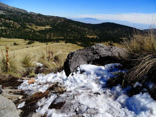 Went up a hill near the Popocatépetl volcano and found a good...
