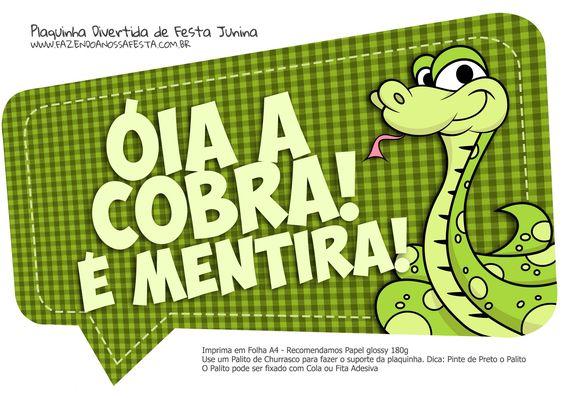 Plaquinha Divertida Festa Junina Óia a Cobra: