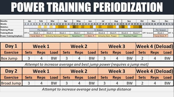 Blocks Of Training Periodization For Dummies Google Search Power Training P Day Train