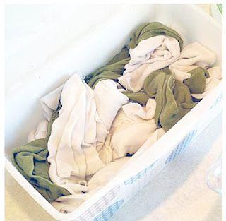 """""""clorox"""" wipes.  reusable, no bleach, clean"""