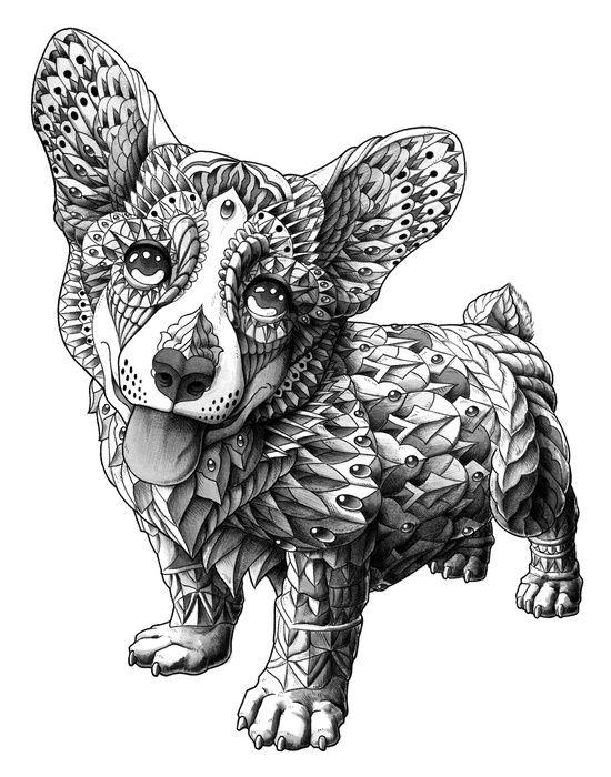 Cute Cool Ornately decorated Corgi dog art Illustration print poster art wall animal pet black and white