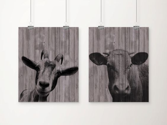 Farm Animals Head Art Print Set of 2.  - Printed on heavyweight matte archival paper with high quality inks. - Frame and mat not included. PLEASE NOTE:
