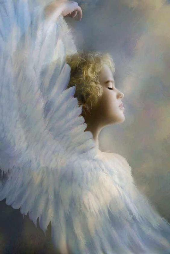 En las alas de los ángeles nuestros corazones se elevan a medida que entramos en la serenidad, con el corazón abierto recibimos los milagros que vienen a nosotros. La gracia de Dios nos rodea ahora