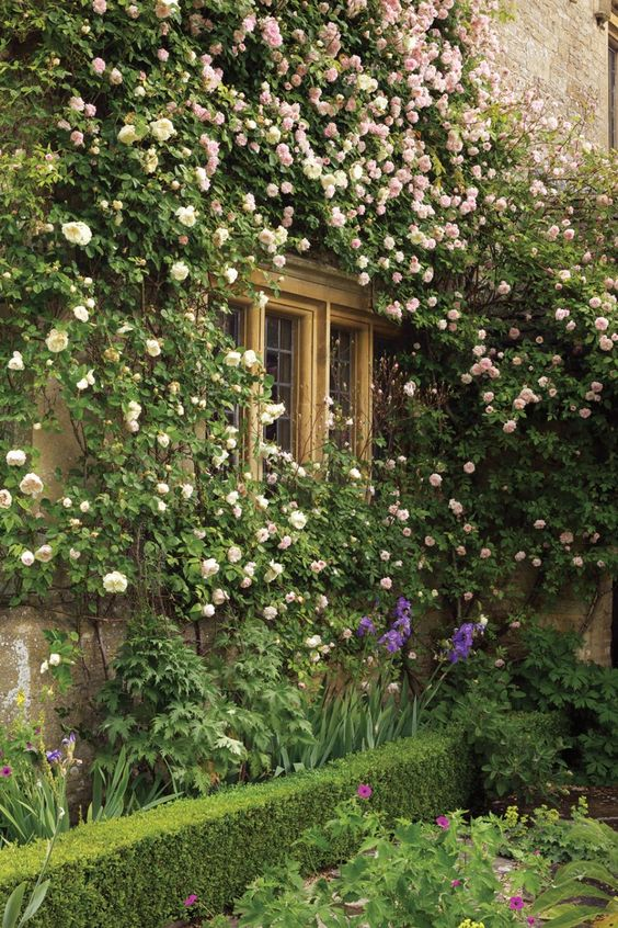 Isabel and Julian Bannerman's gardens