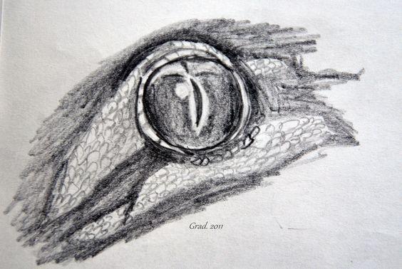 From Barbora Gradova https://www.facebook.com/Bagrrrr?fref=ts #Gecko #Eye #Pencil #Madagascar