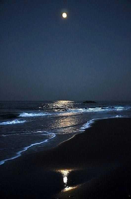 Ok That S Pretty Great Beach At Night Beautiful Moon Night