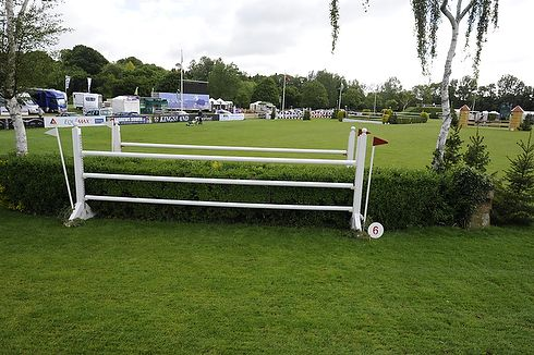 Fence 6: privet hedge oxer (4ft 11in high; 6ft 6in wide)