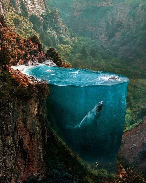 切り立った岩とクジラ